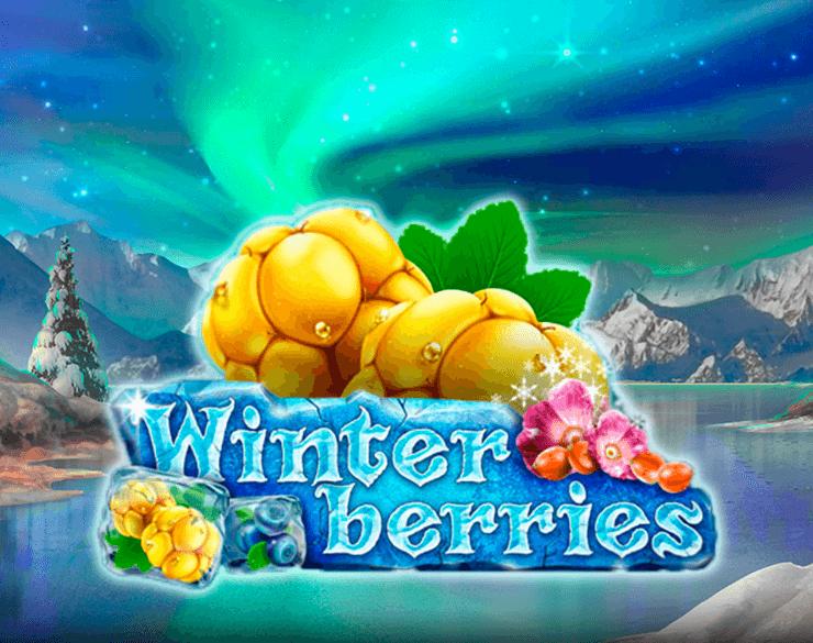 winterberries-logo