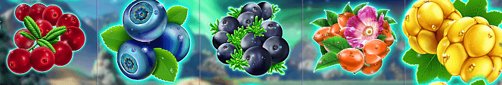 winterberries-symboler