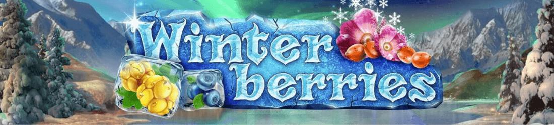 winter berries NO yggdrasil